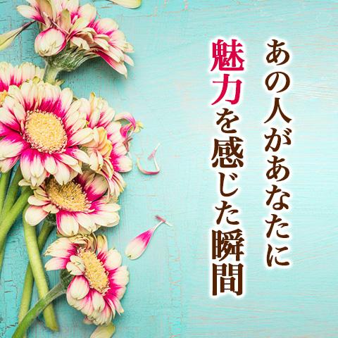 三浦春馬は出会い運上々!? 大河ドラマ『直虎』出演陣の2017年の恋を占う【恋占ニュース】