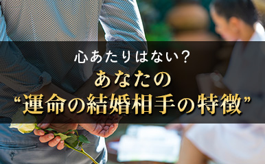 honkaku_tamako02_eyecatch