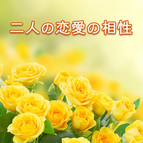 二人の恋愛の相性について【無料占い】