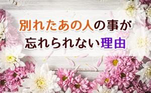 Uechi32_eyecatch