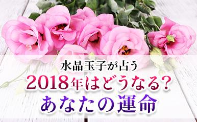 honkaku_tamako04_eyecatch