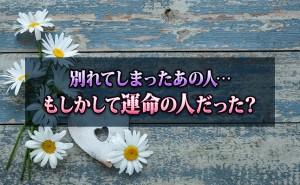 Miyoko31_eyecatch