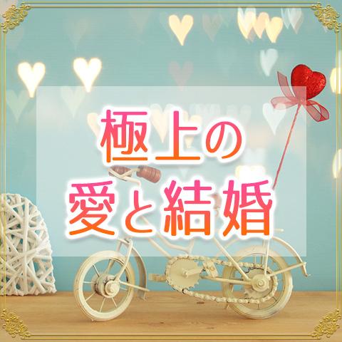 あなたが手に入れる【極上の愛と結婚】~出会いからその幸せな結末まで