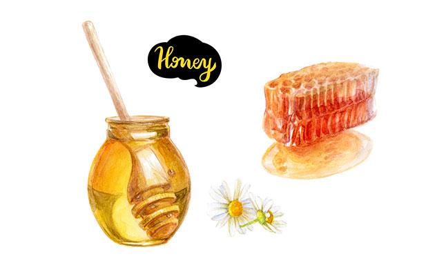 ハチミツのイラスト