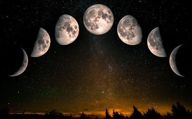タイプ 下弦 の 月