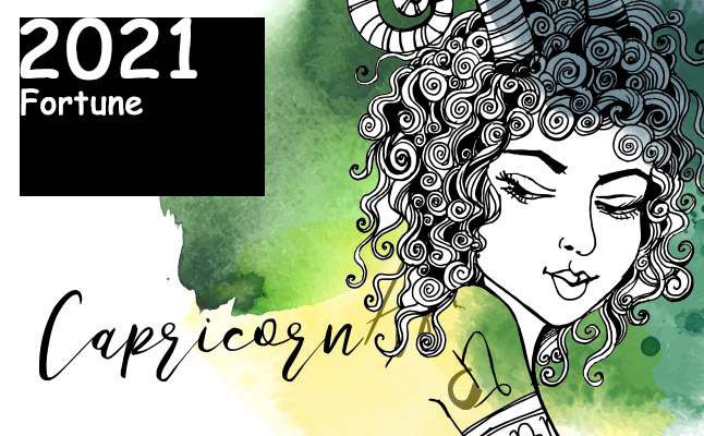 山羊座 2021年の運勢】恋愛運、仕事運、金運…12星座別メッセージ ...